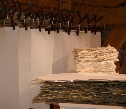 Stage De la fibre au séchoir